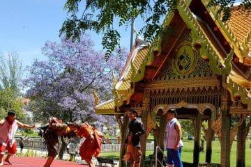 festival thaïlandais à belém