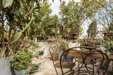visite gratuite des jardins de lisbonne